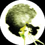 olivia-2016-copia