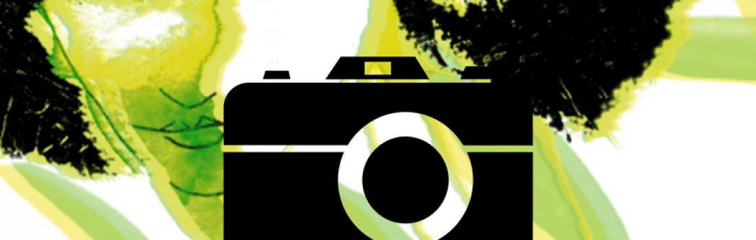 Consulta les imatges de la 54a Fira de l'Oli